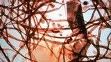 """Oficina O PAPEL DO LIVRO Por Marlene Laky e Cintia Andrade De 7 (terça) a 9 de fevereiro (quinta-feira), das 14h30 às 17h O oficina oferecerá um panorama sobre a história do papel e do livro, com destaque para processos de impressão, tintas e tipos de suportes. Placas de argila com escrita cuneiforme rudimentar, iluminuras,...<br /><a class=""""more-link"""" href=""""https://catracalivre.com.br/geral/agenda/barato/oficina-o-papel-do-livro/"""">Continue lendo »</a>"""