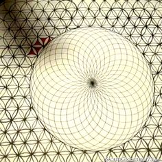Just painting a torus with a flower of life background