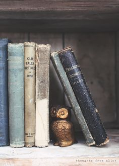 Thoughts from Alice: You're a Hoot {Owl Lover's Gift Guide} Old Books, Antique Books, Vintage Books, Ravenclaw, Bookshelf Styling, Rustic Bookshelf, Book Aesthetic, Book Nooks, Book Photography