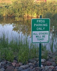 Frog parking only sign 😊