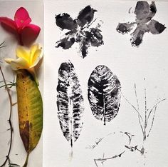 Morning walk, pick kamboja flower and dried leaves. Put acrylic paper on it. Stamp it on paper. Nature gives us so much creativity.