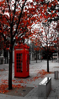 2 Weeks in the UK–my Perfect UK Trip Itinerary Phone Box - Photography Subjects Red Aesthetic, Aesthetic Pictures, Aesthetic Women, Aesthetic Clothes, Garden Ideas England, Landscape Photography, Nature Photography, City Photography, Eiffel Tower Photography