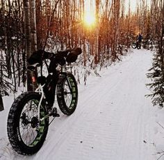 Fat Biking in Alaska; The wider tires on fat bikes roll over the snow better than regular mountain bikes. The first fat bikes were made by welding the rims of three mountain bikes together.