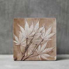 Plaster Crafts, Plaster Art, Plaster Sculpture, Sculpture Art, Botanical Wall Art, Botanical Prints, Pottery Houses, Deco Nature, 3d Texture