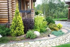 Landscape Design, Garden Design, Side Yard Landscaping, Foundation Planting, Cottage Homes, Farm Life, Outdoor Structures, Patio, Plants