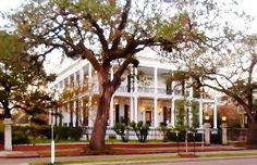 New Orleans House Rental: Historic Garden District Mansion - Very Special & Only One/ N B A Week Now Avail | HomeAway