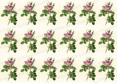 Roses ceramic decals, flower decals, rose ceramic transfer, flower ceramic transfer, fusible transfers, decal sheet, pink roses decal, rose by StainedGlassElements on Etsy
