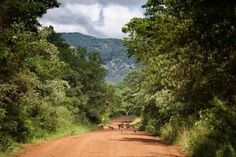 Dirt Roads Rhodesia Zimbabwe Africa, All Nature, Places Of Interest, Its A Wonderful Life, Homeland, Continents, Countryside, South Africa, Egypt