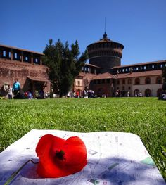 The yards of the Sforza Castle it is wonderful place to seat around. The Sforza Castle is a Gothic Reinassance style construction from 1358-1499 for Francesco Sforza Duke of Milan. It is an square-plan with 4 towers in the corners. Has been restore by Beltrami on 1891-1905 that now holds inside several city's museums an art collection and was one of the Leonardo da Vinci's canvas around Milan  A must see. #castellosforzesco #milanocity #Milan #milanowhattodo #milanodavedere #sightseeing…