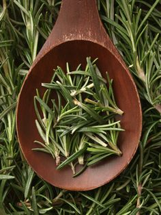 Rosemary extract is good for your skin. ...I love it. http://www.sunputty.com/  http://www.sunputty.com/sunputty_online_store/index.php  Sun Putty #bestsunscreen #bestskincare best sunscreen best skin care
