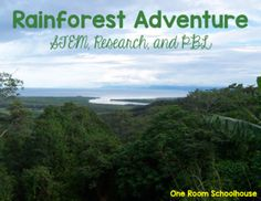 Rainforest Adventure - One Room Schoolhouse Science Lesson Plans, Science Lessons, Science Activities, Teacher Awards, Expository Writing, Love Teacher, Stem Science, International Day, Survival Quotes