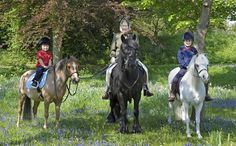Queen Elizabeth Horse Riding With Grandchildren