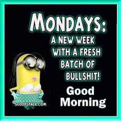 Find very good Jokes, Memes and Quotes on our site. Keep calm and have fun. Funny Pictures, Videos, Jokes & new flash games every day. Happy Monday Funny, Monday Jokes, Monday Morning Humor, Happy Monday Morning, Monday Humor Quotes, Funny Friday Memes, Frases Humor, Friday Humor, Mondays