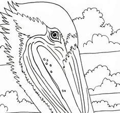 Pelican coloring page beach art digital by adultcoloringbook