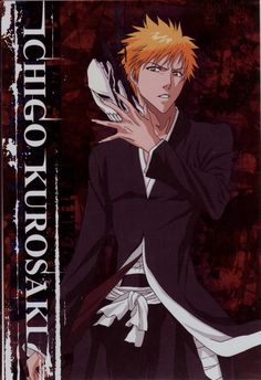 Anime Art Manga Bleach Wallpaper Cleaning Evolution Studios Naruto Names
