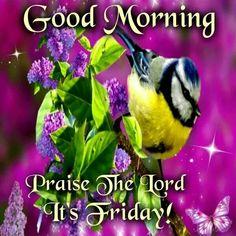 Good Morning. It's Friday. | Good morning and good night | Pinterest