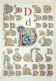 Panteek   Antique print of decorative 'D'