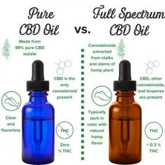 Jun 2019 - How to choose a CBD product? CBD supplement products have gained popularity in the market through the recent years because they offer solutions for a wide range of health problems. CBD products are available in capsule, gummies, oils, rubs, and Medical Cannabis, Cannabis Oil, Cannabis Growing, Cannabis Edibles, Cannabis Plant, Oil Safe, Endocannabinoid System, Cbd Hemp Oil, Oil Benefits