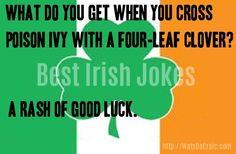 Best Short Jokes, Irish Jokes, Irish Rock, Rock Videos, Good Luck, Ireland, Lol, Funny, Quotes