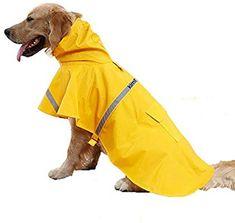 regenjacke hunde vergleich hunde regenjacke regenjacke regenjacke vergleich regenjacke vergleich hunde hunde hunde vergleich Rq354ALj