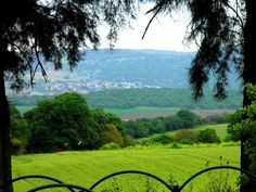 الريف الفلسطيني.. بالقرب من قرية بسمة طبعون..