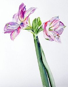 Just the two of us by Brenda Behr Watercolor ~ x Floral Watercolor, Watercolor Paintings, Behr, Colored Pencils, Glass Vase, Two By Two, Bloom, Drawings, Artist