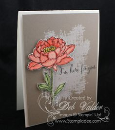 13be35e8061ba0 809 Best Stampin  Up! Ideas images