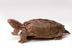 Okinawa black-breasted leaf turtle by kei Watanabe Money Origami, Paper Crafts Origami, Oragami, Origami Art, Origami Instructions, Origami Tutorial, Origami Tortoise, Origami Turtle, Origami Models
