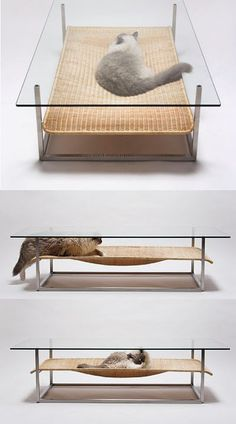 This can only be special ordered from Japan for way too much $$$, so I didn't bother with link, but I'm thinking DIY. Cat hammock coffe table.