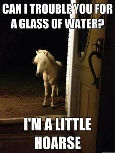 """Can I trouble you for a glass of water? I'm a little hoarse"""
