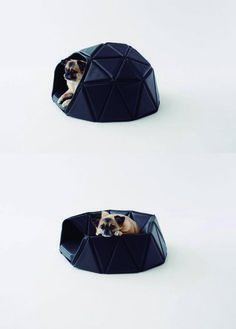 Dog stuff-My izzy would love this