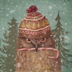 iCanvas Christmas Owl Portrait Gallery Wrapped Canvas Art Print by Terry Fan Owl Canvas, Canvas Prints, Art Prints, Canvas Art, Owl Graphic, Owl Wall Art, Terry Fan, Whimsical Owl, Owl Pillow