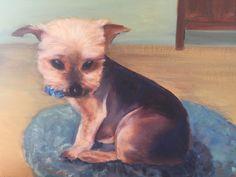 Danny's Pup, Koda bear. Oil. 2015