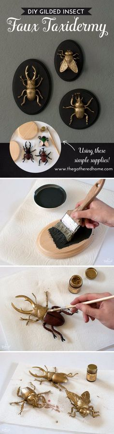 DIY Gilded Insect Faux Taxidermy.                                                                                                                                                                                 More