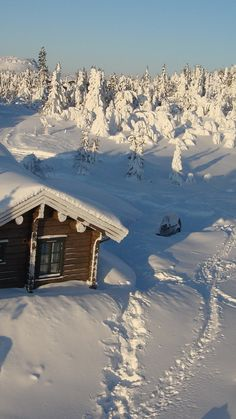 house, wood, solitude, snowdrifts, snow, winter, cover