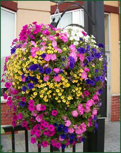Round ball hanging flower basket instructions