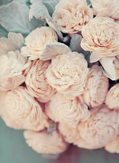 blush colored roses, love these colors together
