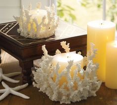 coral candle holders office