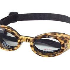 Leopard print dog goggles! <3 awww