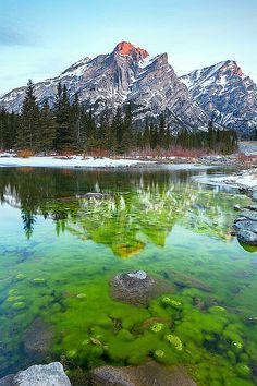 ✯ Kananaskis - Alberta, Canada,  Near Canmore. Some of the best outdoor space and wildlife viewing.