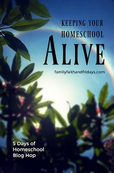 Family, Faith, and Fridays: Keeping Your Homeschool Alive- There's A Light At ...
