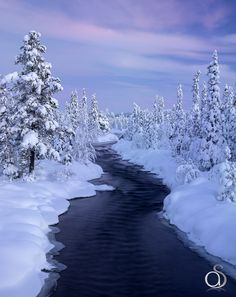 Frozen Wonderland by Antony Spencer on 500px