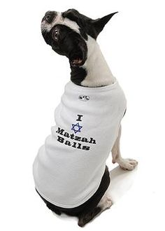 """I Love Matzah Balls"" Dog Tank at barker & meowsky a paw firm since 1998 carries dog clothes, dog accessories, dog carriers, dog collars, dog toys, dog beds and dog treats"