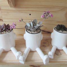 Green Family Vivarium, Planter Pots, Succulents, Green, Succulent Plants, Terrarium