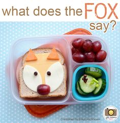 What does the fox say?? Not sure about that, but his lunch is packed in @EasyLunchboxes
