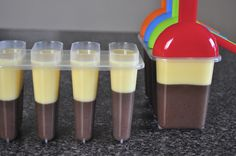 Pudding Pops: 1 pkg Chocolate or Vanilla instant pudding mix. 2 cups 2% milk. Mix well, pour into molds, freeze. If you like them to be even creamier use only 1 1/2 cups of milk and a 1/2 cup light vanilla yogurt.