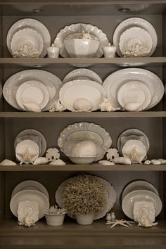 A collection of cream ware. Note how it pops on the soft brown walls (like yours).