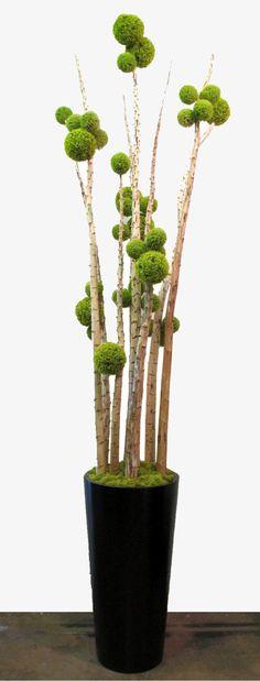 Green Allium Sphere on Yucca Poles in Black Fiberglass Tapered Round Container with Chartruese Reindeer Moss 123 Deco Floral, Arte Floral, Floral Design, Ikebana, Garden Beds, Garden Art, Moss Art, Pom Pom Crafts, Gras