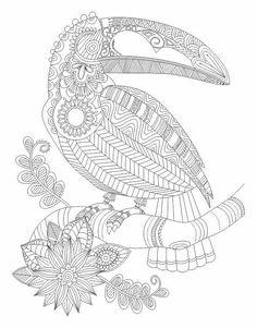 Toucan bird Abstract Doodle Zentangle Coloring pages colouring adult detailed advanced printable Kleuren voor volwassenen coloriage pour adulte anti-stress kleurplaat voor volwassenen