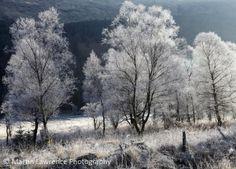 Early morning frost in Gleann Mor